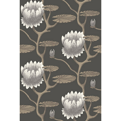 Cole And Son Summer Lily Wallpaper in Black/Gold