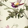Cole And Son Hummingbird Wallpaper in Cream