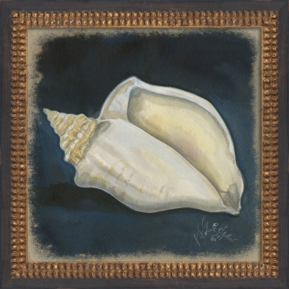 Seashell Art 4