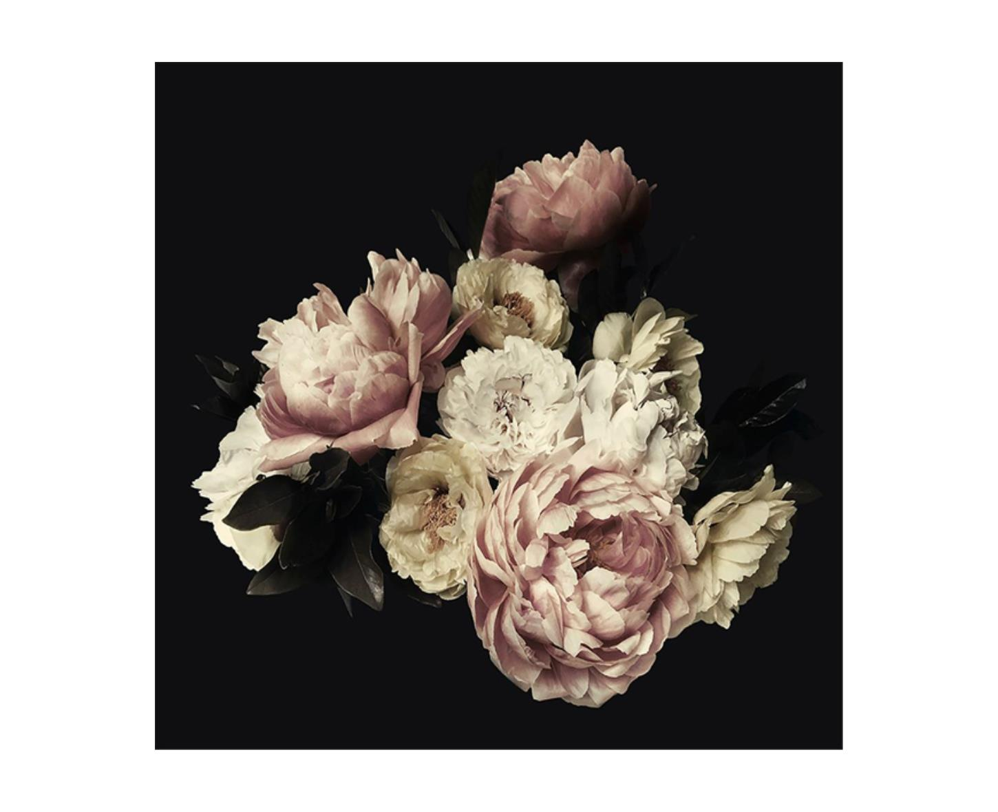 Portrait of Peonies