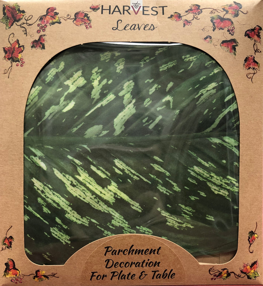 Harvest Leaves Parchment Decoration - Tropical  Leaf Large