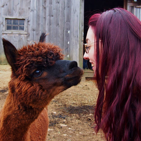 Amanda, chief maker of Classy Squid, and Tennyson the alpaca