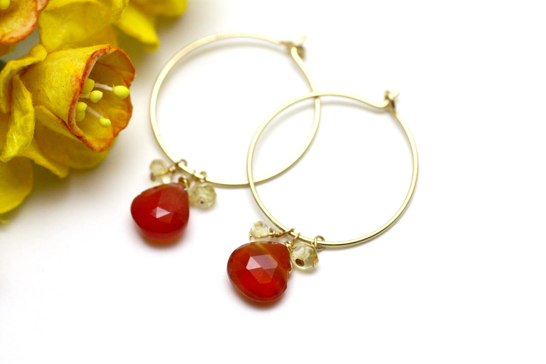 Carnelian and Citrine Hoop Earrings in Gold