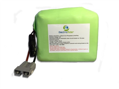 LiFePO4 Lithium 24V 20AH Clydesdale Edition Battery for Electric Bikes