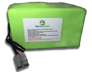 LiFePO4 Lithium 48V 20AH Clydesdale Edition Battery for Electric Bikes