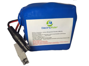 Lithium Ion 36V 20AH Battery for Electric Bikes - Up To 1600 Cycles