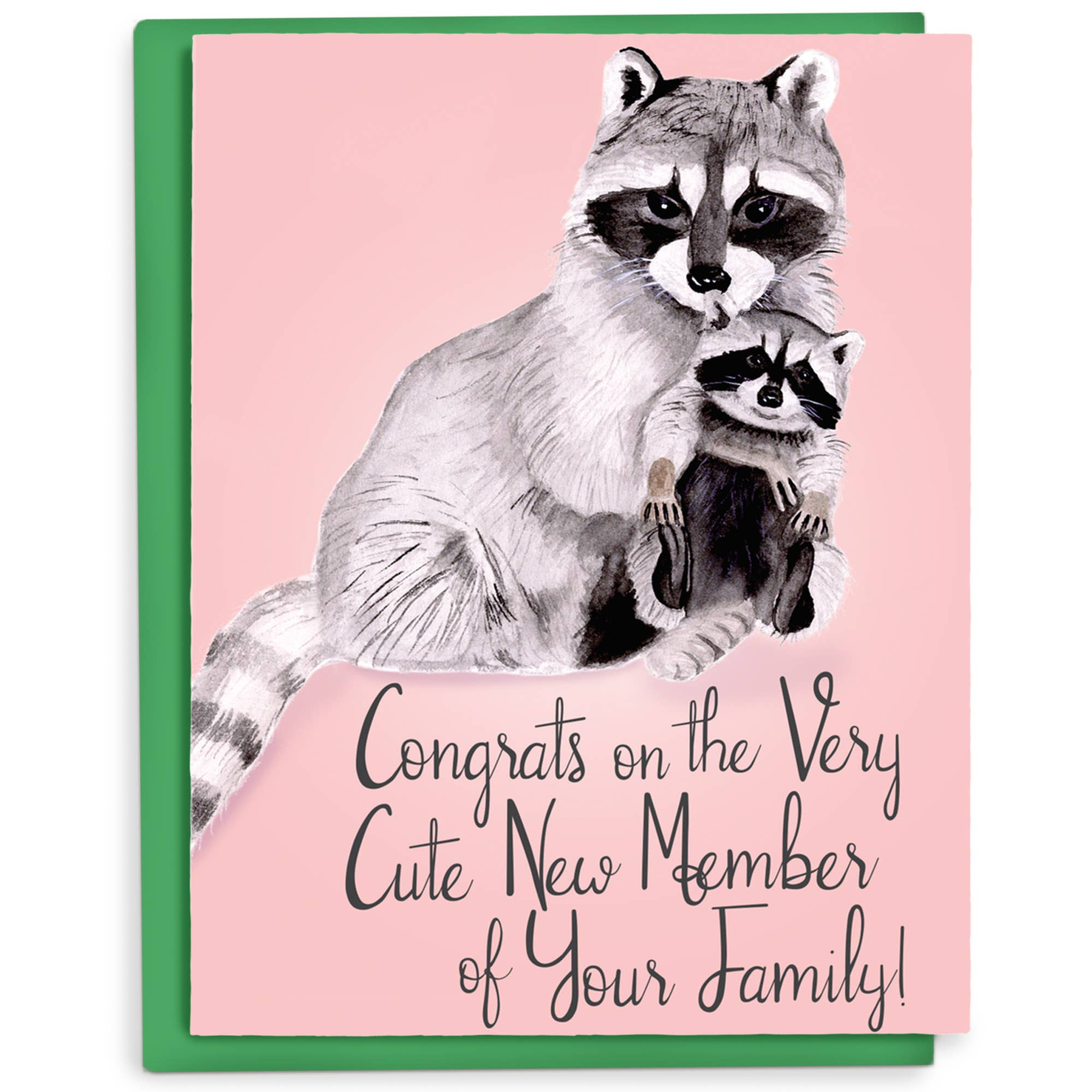 Raccoon Baby Greeting Card