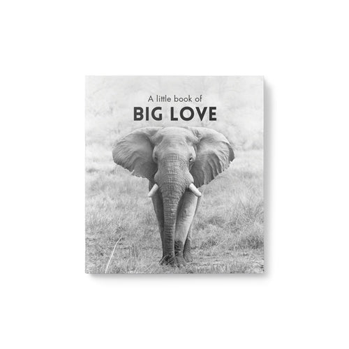 A Little Book of Big Love