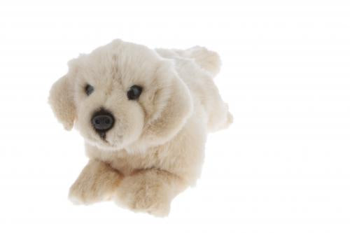 Golden Retriever - 28cm floppy (Maple)