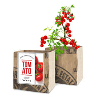 Urban Agriculture Organic Grow Kit - Tomatoes