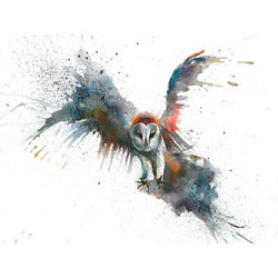 Owl in flight Canvas