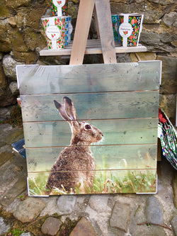 Hare photographic Canvas on board