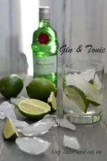 Tanqueray Gin Drinks