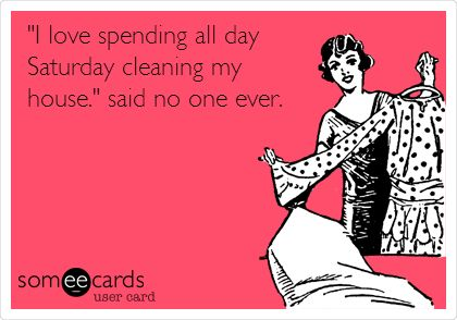 I love spending all day Saturday cleaning my house said no one ever