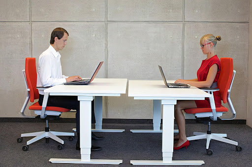 Two People Sitting Straight on Office Chairs