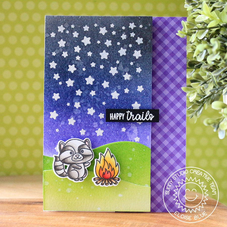 Sunny Studio Stamps Cascading Stars Raccoon Camping Card by Eloise