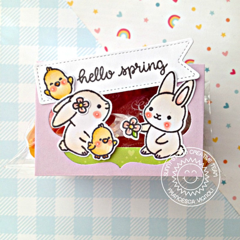 Sunny Studio Stamps Chubby Bunny & Spring Chicks Easter Gift Box by Franci