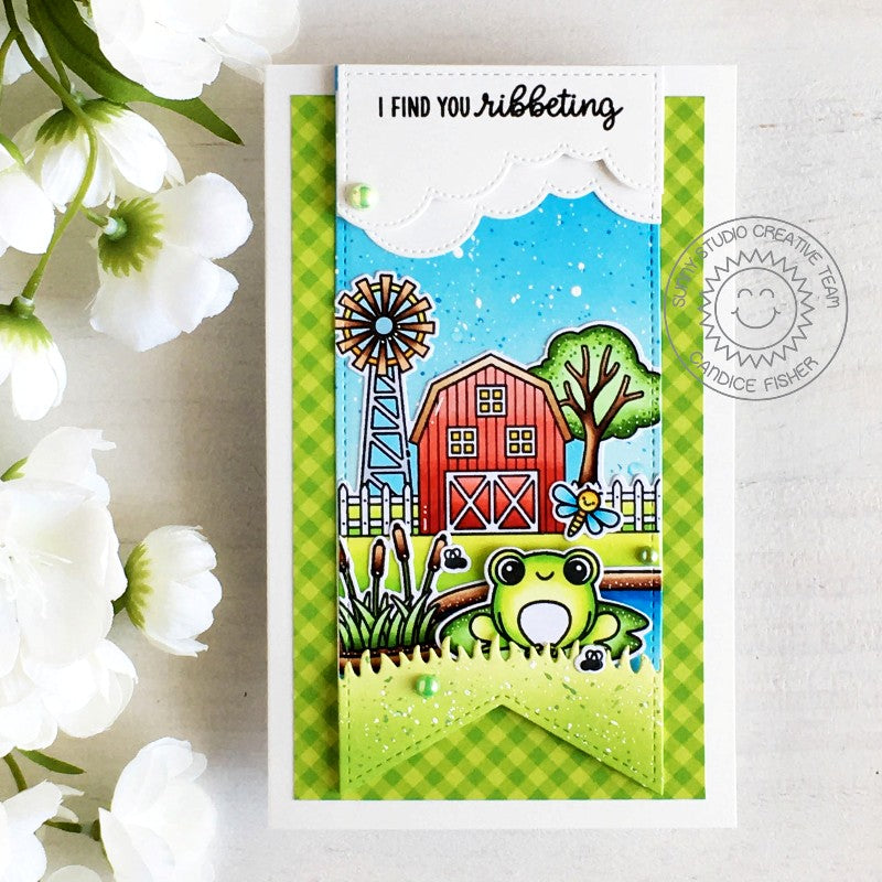 Sunny Studio Stamps I Find You Ribbeting Punny Frog on Farm Card with Stitched Banner (using Slimline Pennant Dies)