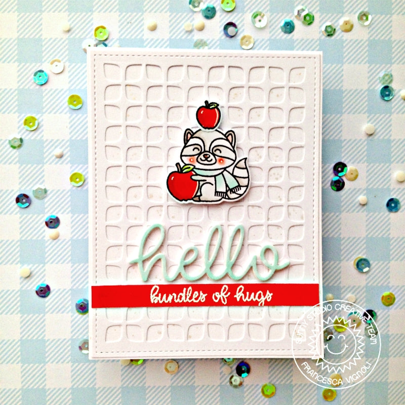 Sunny Studio Stamps Retro Petals Hello Bundles of Hugs Raccoon Card using Frilly Frames Retro Petals Background die