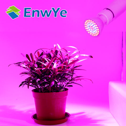 LED Lampada cfl Grow Light - E27 E14- GU10 - 110V 220V - Full Spectrum Indoor Plant Lamp