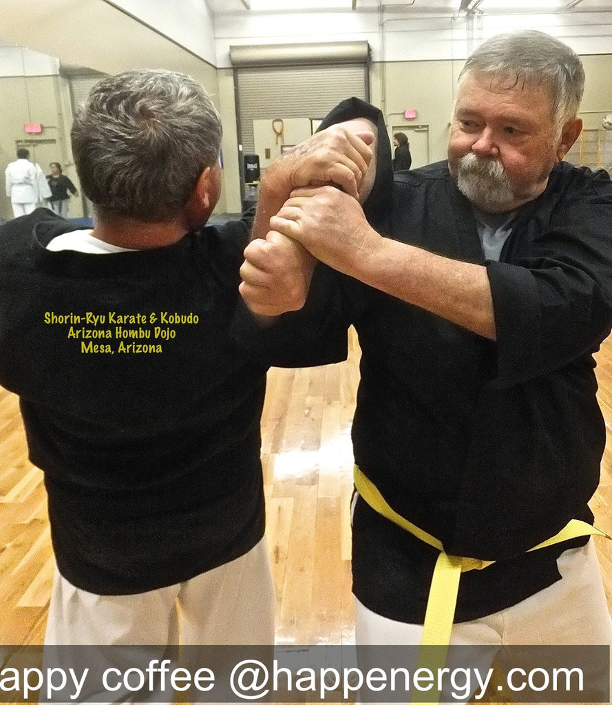 Traditional martial arts are all about self-improvement.