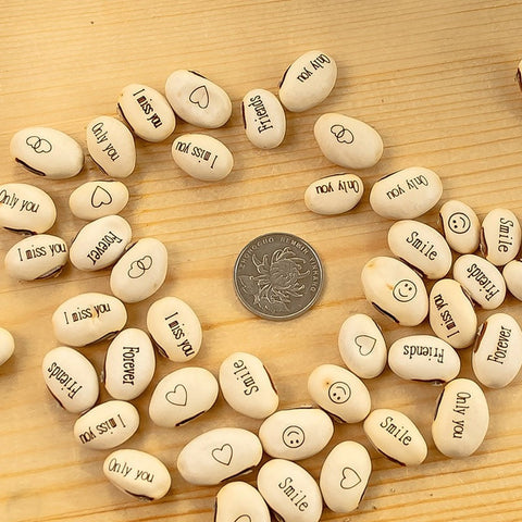Image of 50  Magic Message Bean Seeds