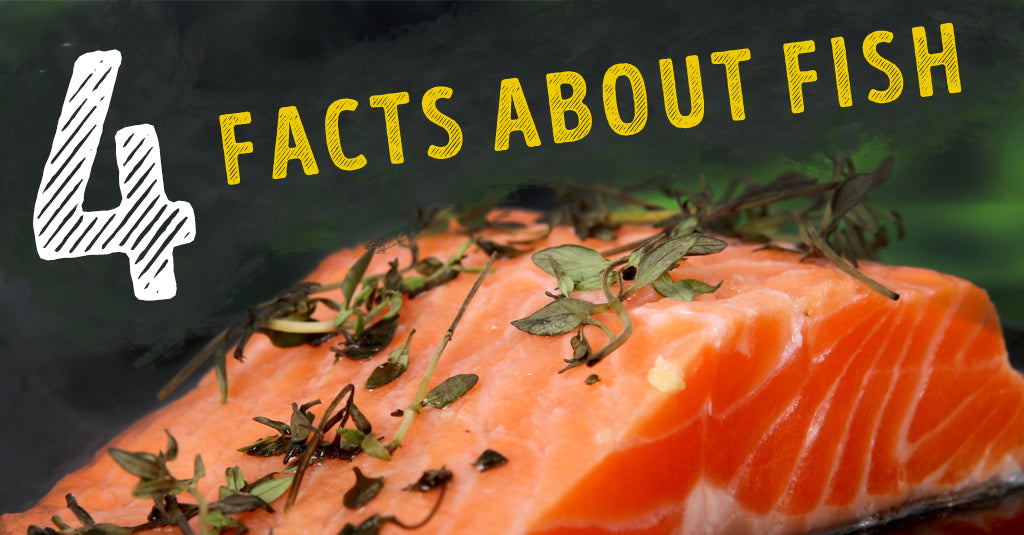 4 FACTS ABOUT FISH