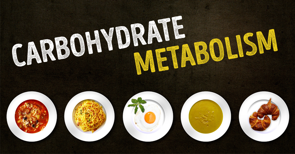 LIFE HACKS TO IMPROVE THE CARBOHYDRATE METABOLISM