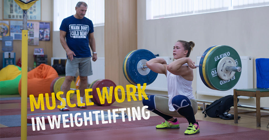 MUSCLE WORK IN WEIGHTLIFTING