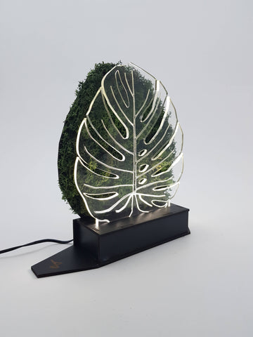 Monstera Moss Lamp - Mobu