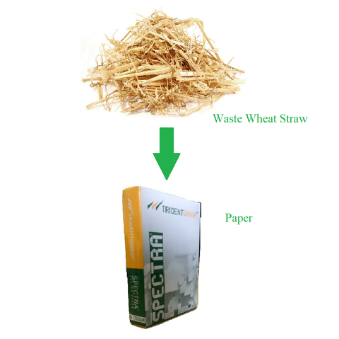 Wheat Straw waste to paper