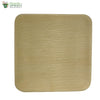 "Biodegradable Compostable Areca Square Plate table ware microwave+freezer safe 8 x 8"" (Set of 25)"