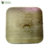 "Biodegradable Compostable Areca Square Plate table ware microwv+freezer safe 10 x 10"" (Set of 25)"