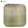 "Biodegradable Compostable Areca Square Plate tableware microwave+freezer safe 12 x 12"" (Set of 25)"