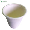 Biodegradable Compostable Sugarcane Bagasse Glass cup 220 ml  (Set of 25)