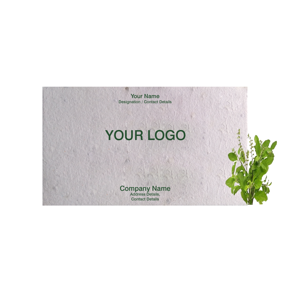Recycled plantable paper visiting cards dual side printing with holy recycled plantable paper visiting cards with holy basil seeds 500 cards colourmoves