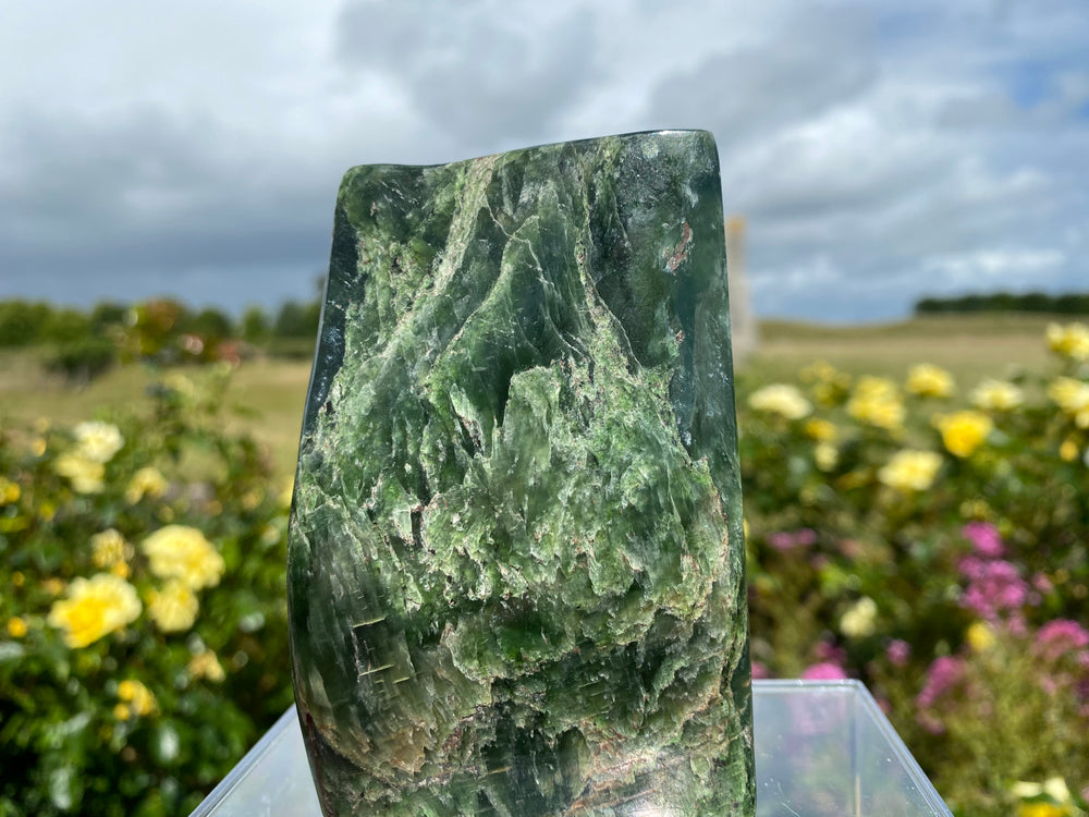 Beautiful Jade 'Standing Stone'