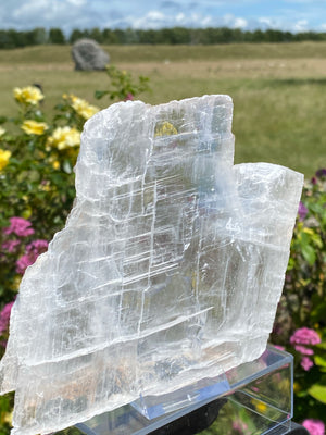 Fishtail Selenite C031