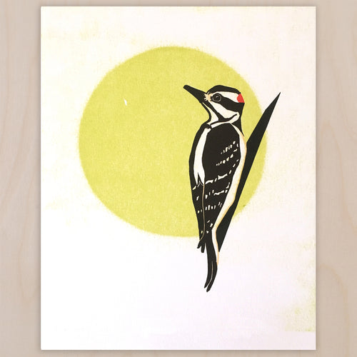 Downy Woodpecker fine art linoleum block letterpress print