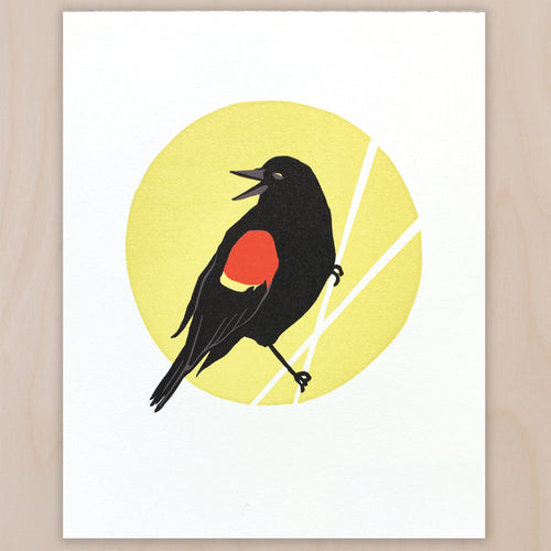 Red-winged Blackbird fine art linoleum block letterpress print