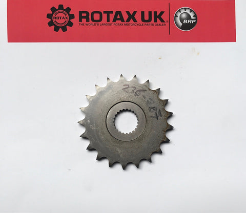 236207 - 21T Sprocket for engine types: 257, 428