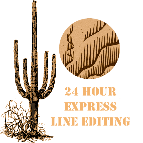 24 Hour Express Line Editing
