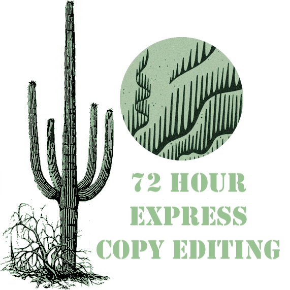 72 Hour Express Copy Editing