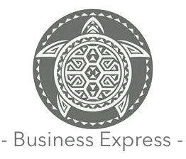 24 Hr. Business Express Editing - $12/pg.