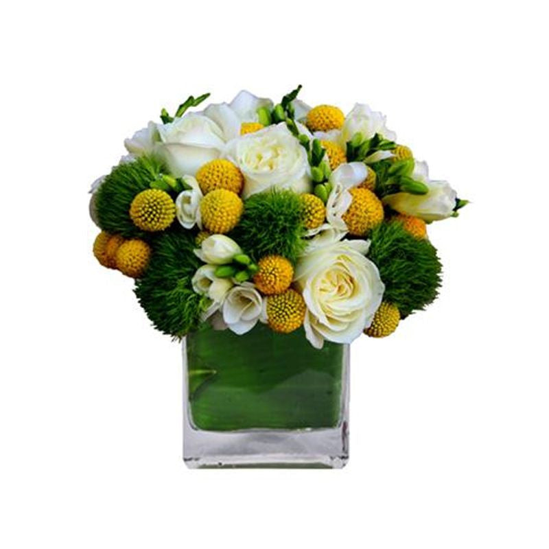 Roses And Billy Balls Interior Foliage Design