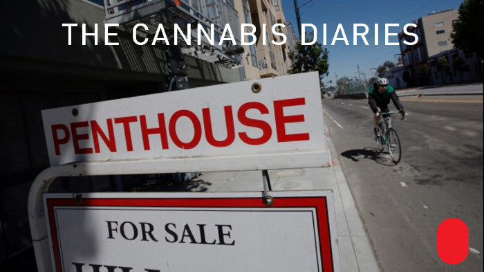 Cannabis Diaries The PAX Loving Real Estate Agent