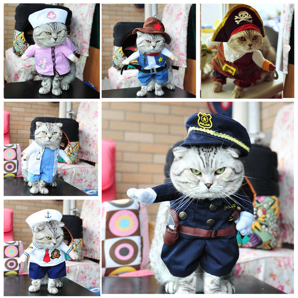 FREE SHIPPING! Funny Cat Costume