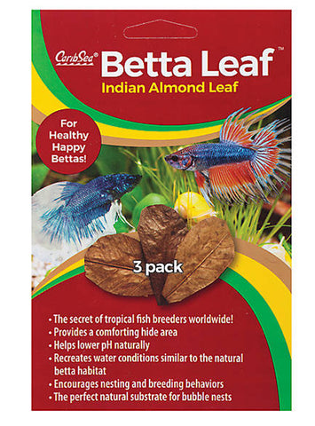 products/Betta_Leaf_5f344134-b8de-4a0d-bedf-d56fd47dd1bd.jpg