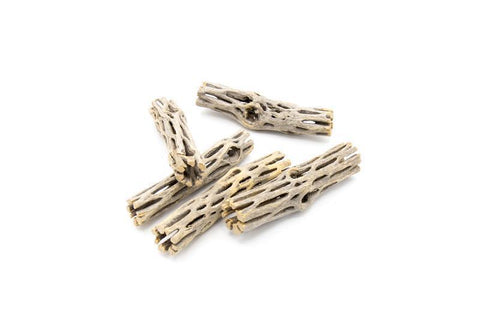 Cholla Driftwood Sticks 4 Inch