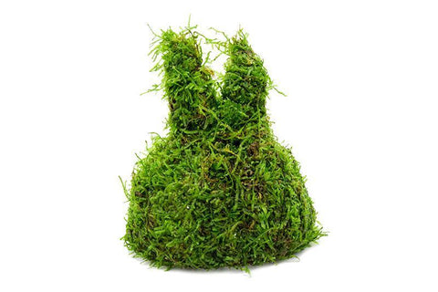products/christmas-moss-on-coconut-rabbit-11725670842449.jpg